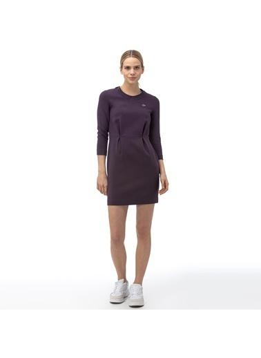 Lacoste Kadın  Elbise EF9769.EP4 Mor